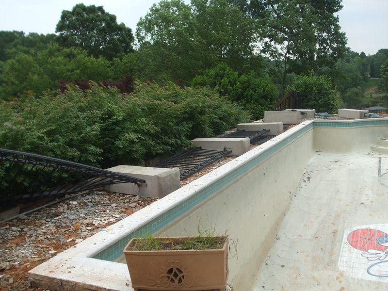 Shinn-hornet-pool