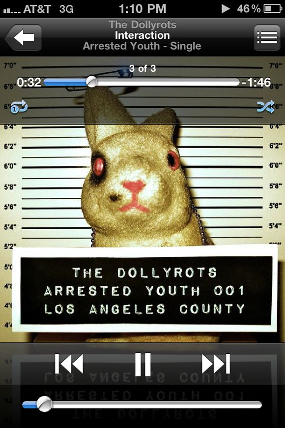Dollyrots-arrested-youth