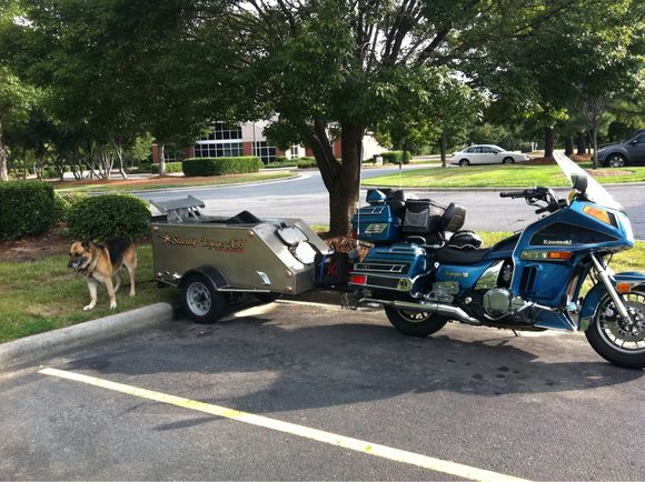 Star Trek Motorcycle Dog Trailer