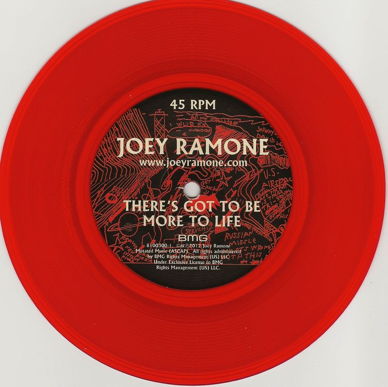 Joey-ramone-theres-got-to-be-more-to-life
